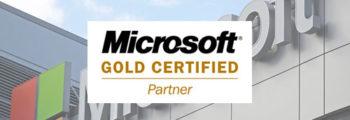 2008: Microsoft Gold Partnership